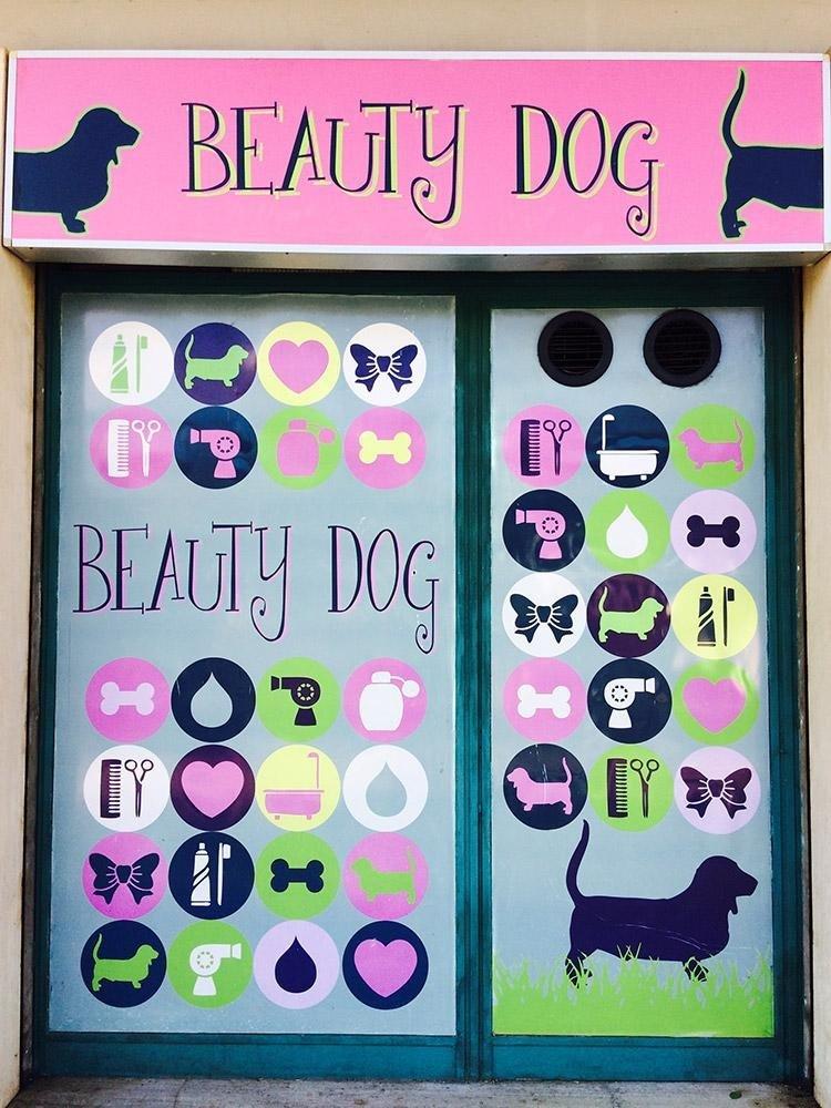 salone di toelettatura cani