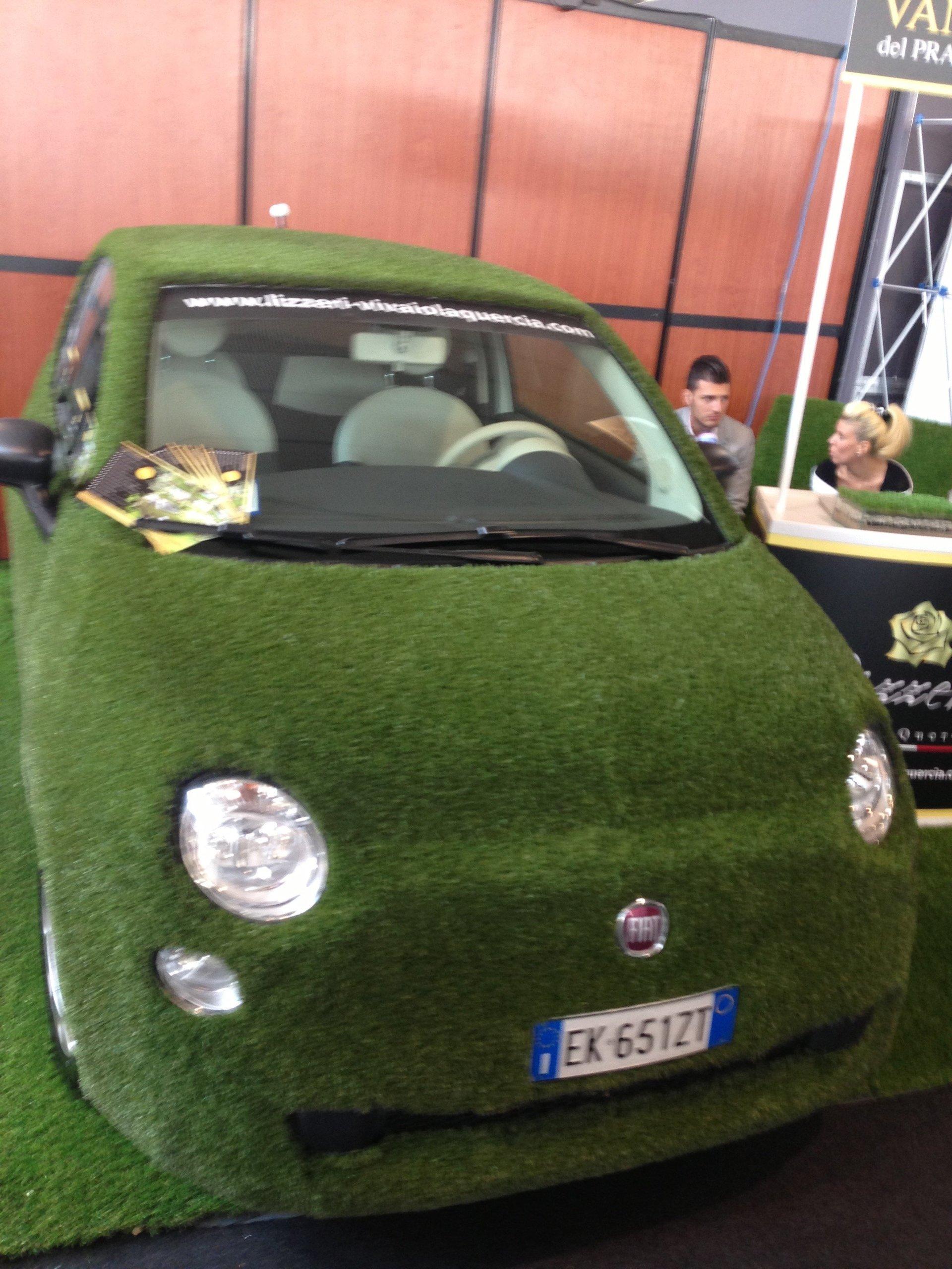 Scocca di un'auto coperta con manto erboso