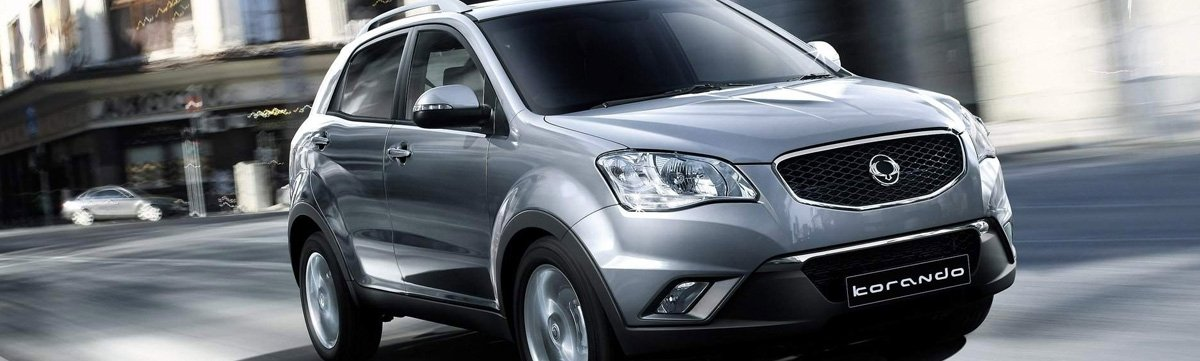 any-power-batteries-ssangyong