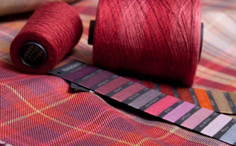 Campionario di colori, campione di tessuto e due bobine di filo rosso