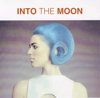 Into the moon