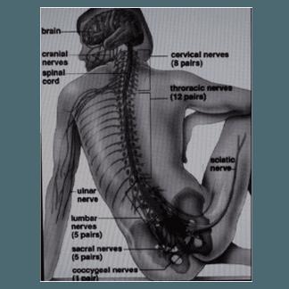 cura dolori zona cervicale