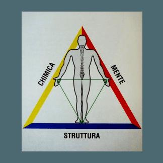 studio triangolo salute