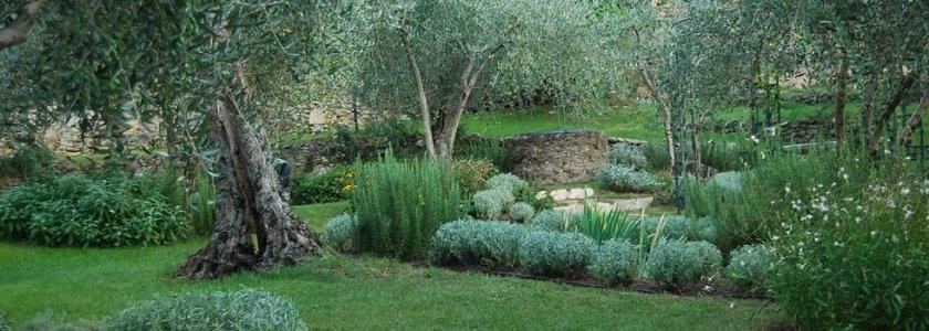 creazione giardini e parchi