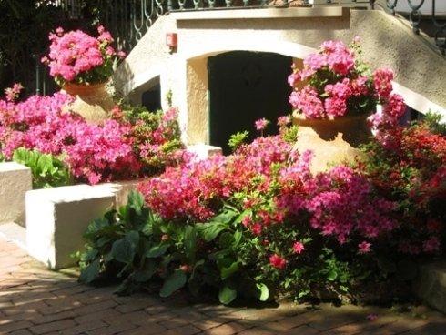 progettazione giardini toscani
