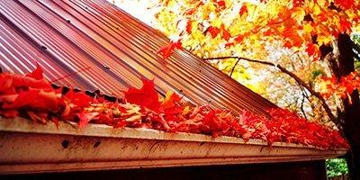 Rainman Seamless Rain Gutters Leaf Amp Needle Protection