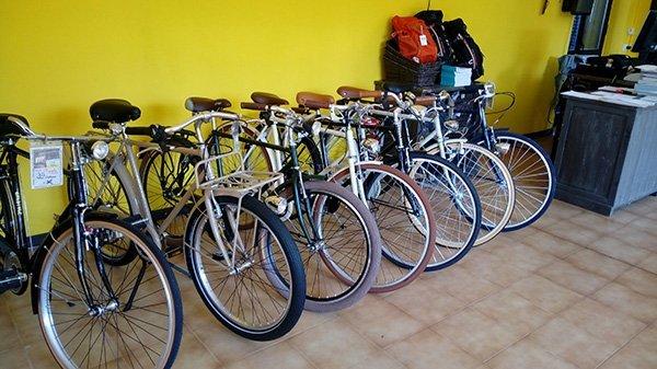 Biciclette passeggio per uomo e donna