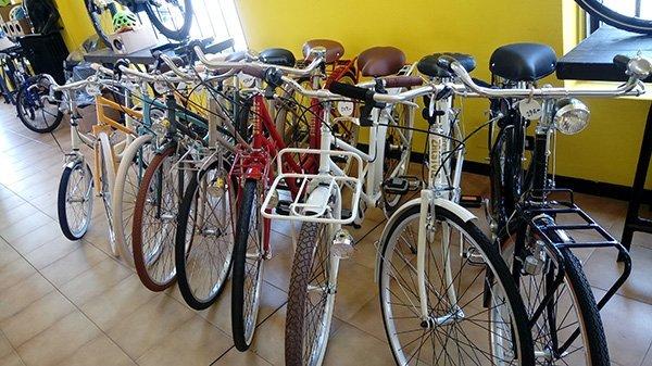 Bicicletta per acquistare o affittare ,di vari colori e per tutti i gusti sia uomo,donna o bambino