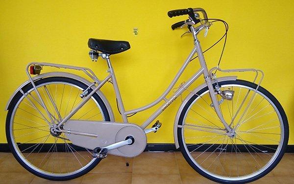 Bicicletta marrone chiara per donna con protettore della catena e luci