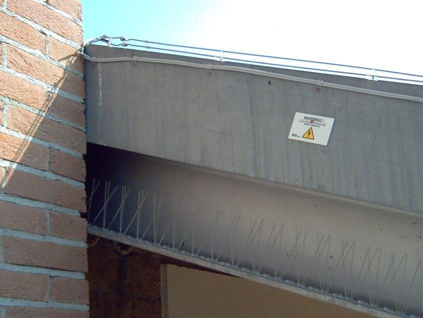 dissuasore elettrico per piccioni e gabbiani installato su parete di una abitazione civile