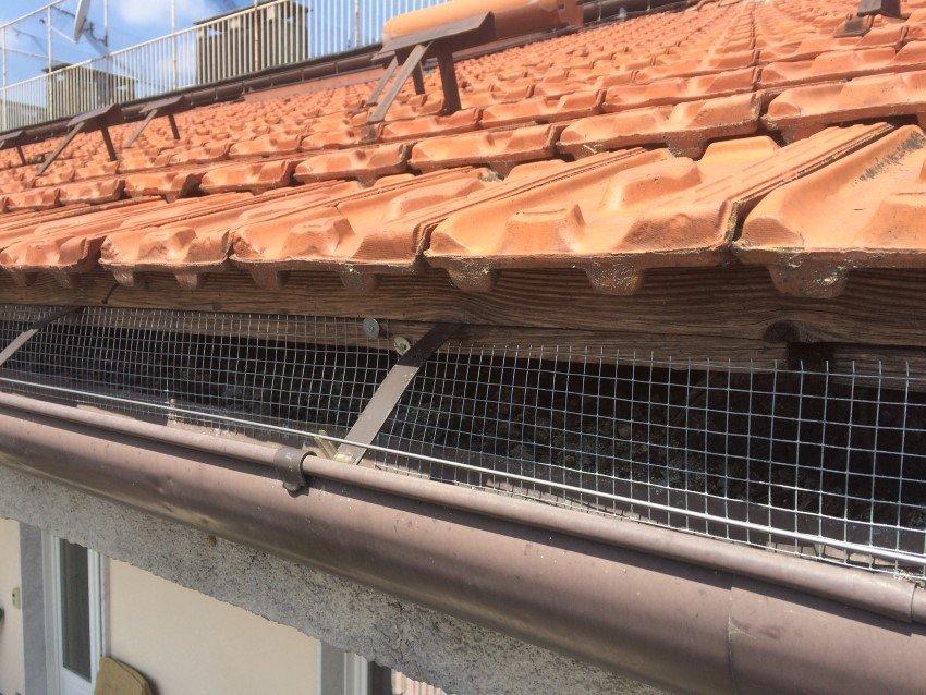 dissuasore meccanico per piccioni su grondaia