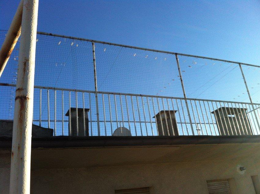 rete antintrusione per piccioni e volatili su ringhiera di balcone