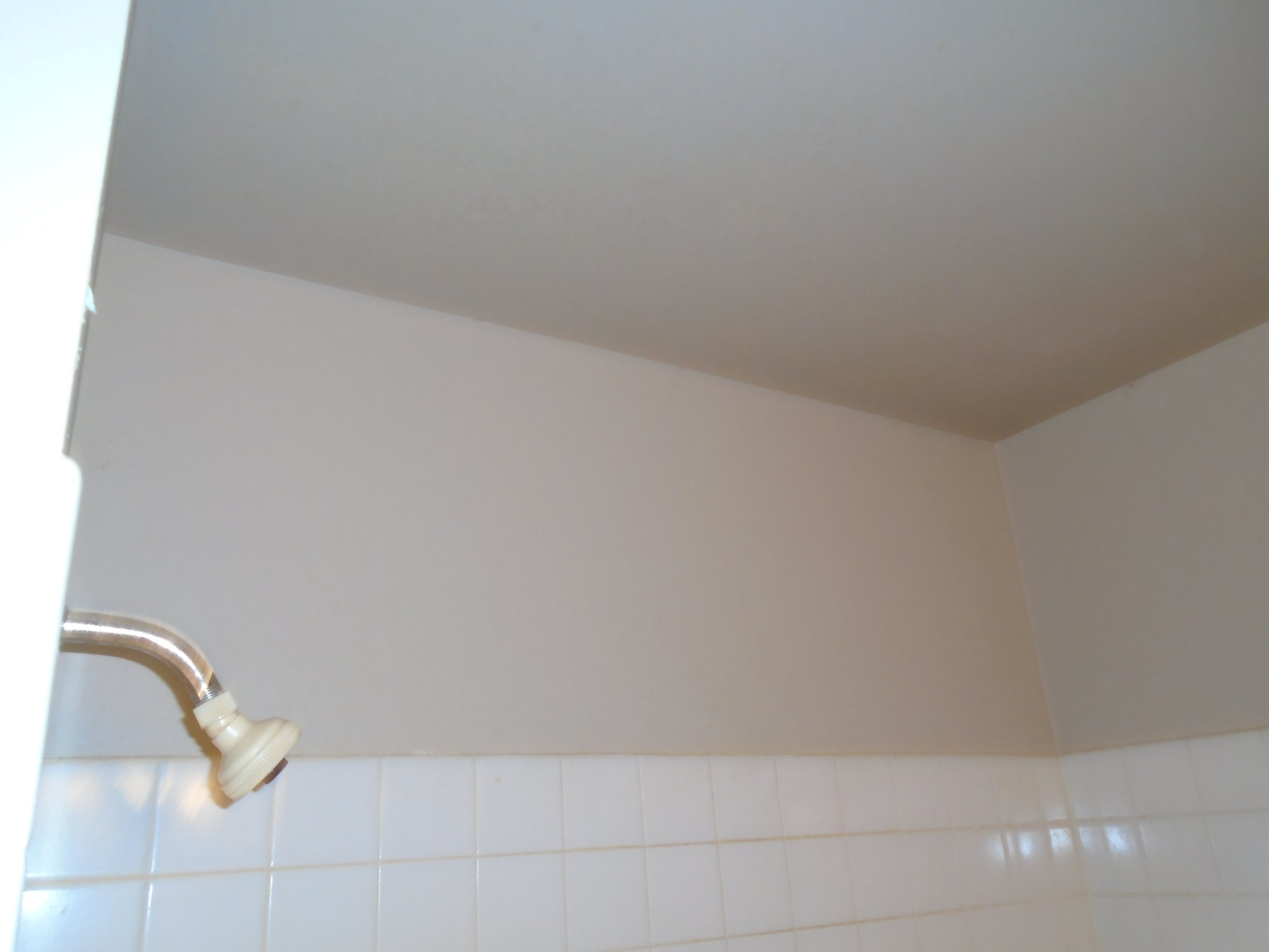 bathroom painter