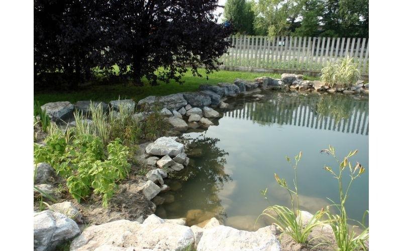 laghetto giardino