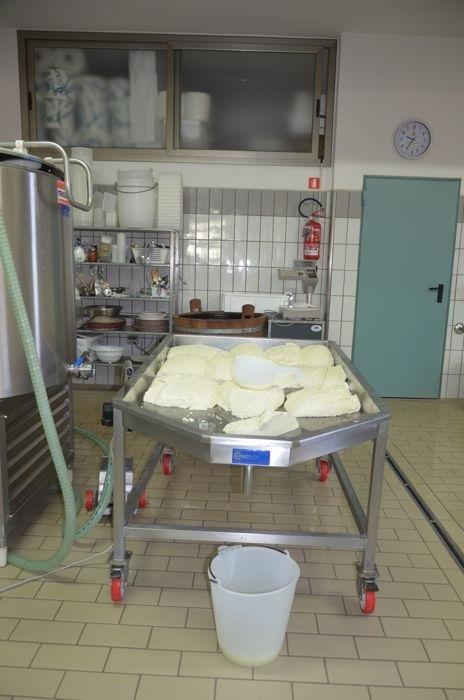 lavorazione latticini