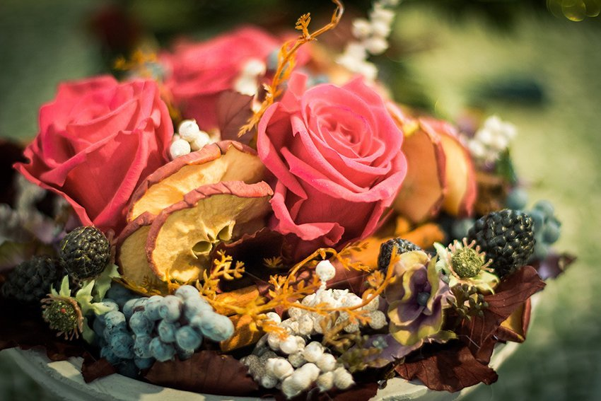 Tre rose rosse, mela secca, frutti del bosco secchi e foglie di pino