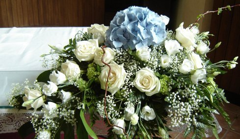 Centro de rose bianche e una ortensia blu