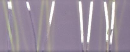 piastrella decorazione argento viola