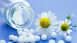 fitoterapia, farmaci convenzionali