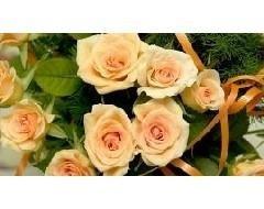 composizioni floreali Casati sas