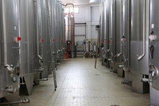 Remigio spiga vinegar company