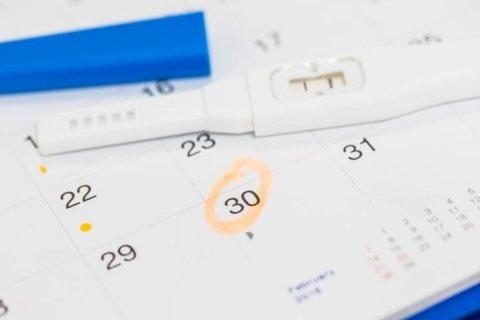 agenda della gravidanza