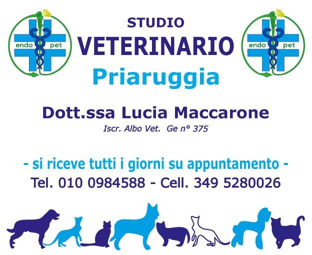 Lo Studio Veterinario Priaruggia a Genova Quarto