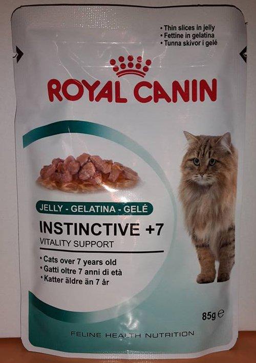 mangime per gatti