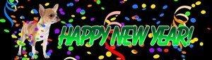 chihuahua-new-year
