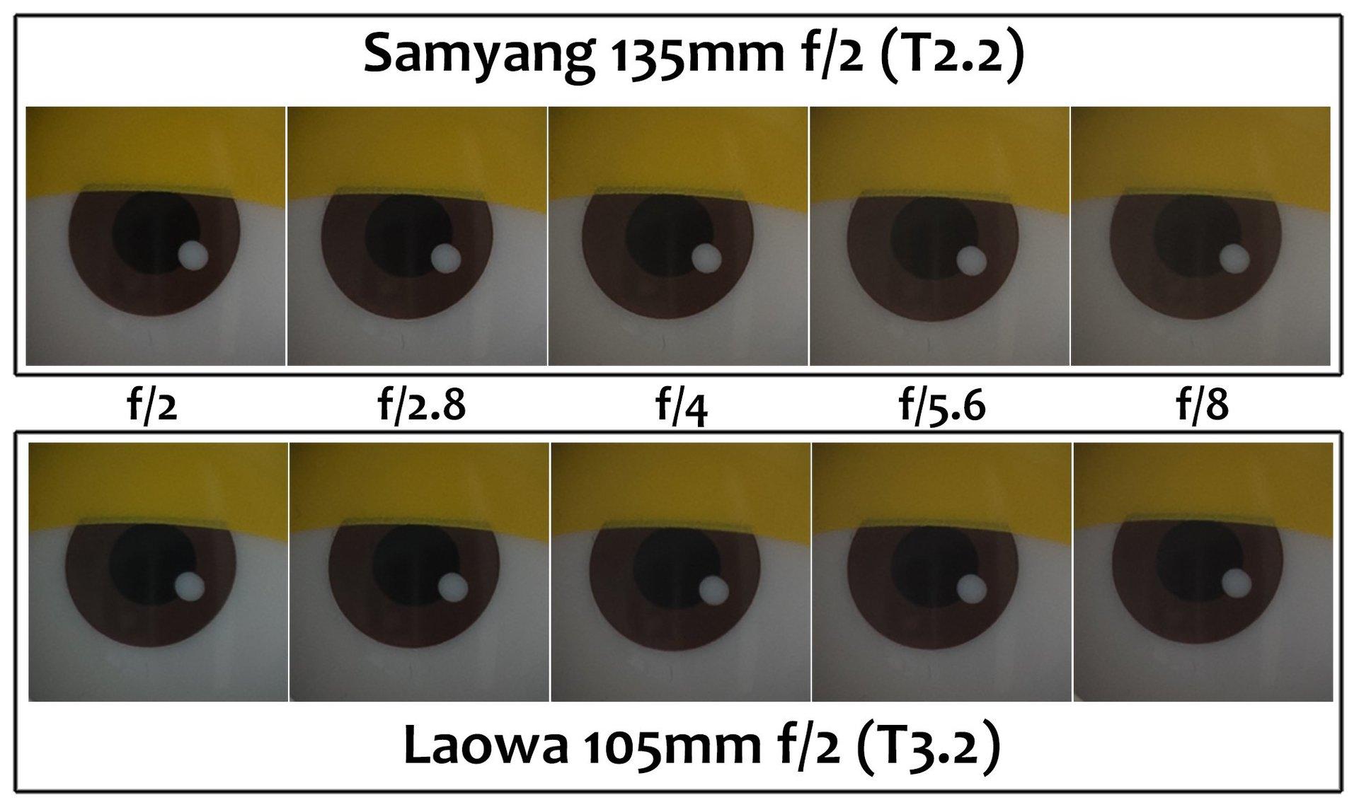 Đánh giá Laowa 105mm f/2 T3.2 Smooth Trans Focus - ống kính STF bình dân