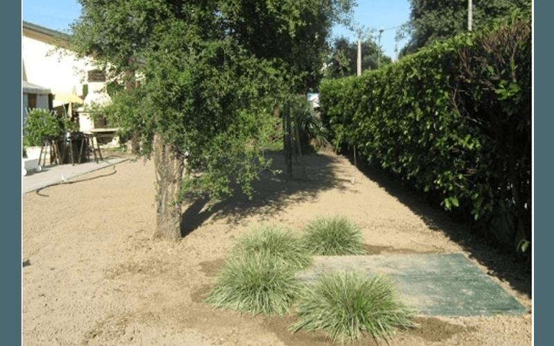 Preparazione di giardini