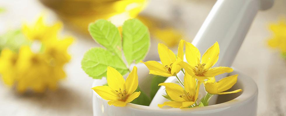 un mortaio con dei fiori gialli