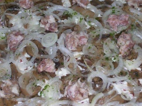 farcitura della pizza con cipolle e carne