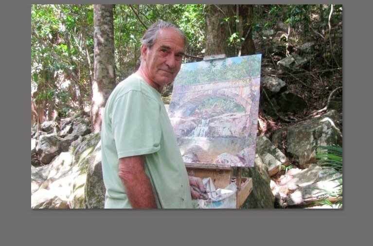 peter lawson artist arcadia magnetic island
