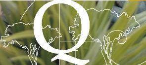 Quantum Landscapes Matakana QLM logo