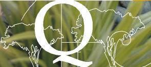 QLM logo for Warkworth's Quantum Landscapes Matakana