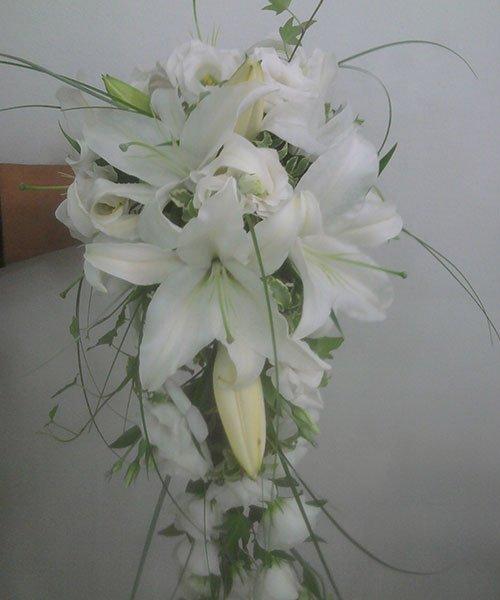 una mano che tiene in mano dei fiori di color bianco