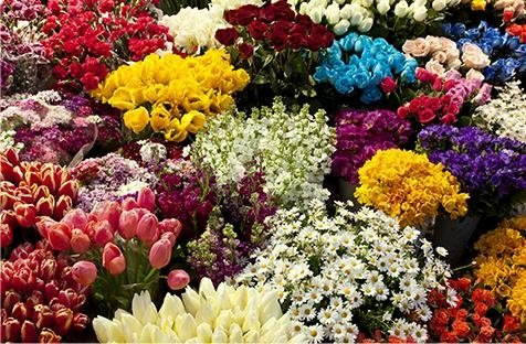 negozio con composizioni floreali per cerimonie e bouquet da sposa