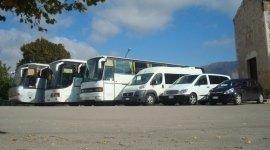 servizio affidabile, parco auto, organizzazione viaggi