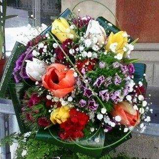 vendita tulipani freschi