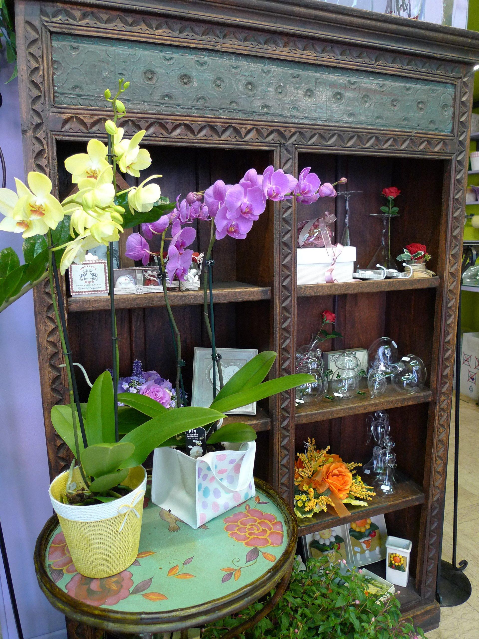 Vendita vasi arredo casorezzo milano arte e fiori for Vasi arredo