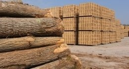 legname per imballaggi