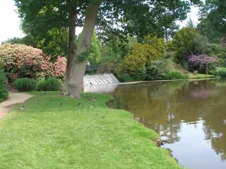 View of the pond at the sheffield park