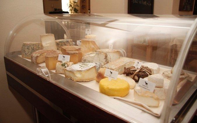 formaggi caseari