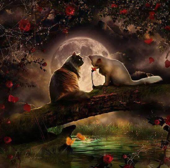 un dipinto di due gatti nella notte seduti su un ponte di un albero