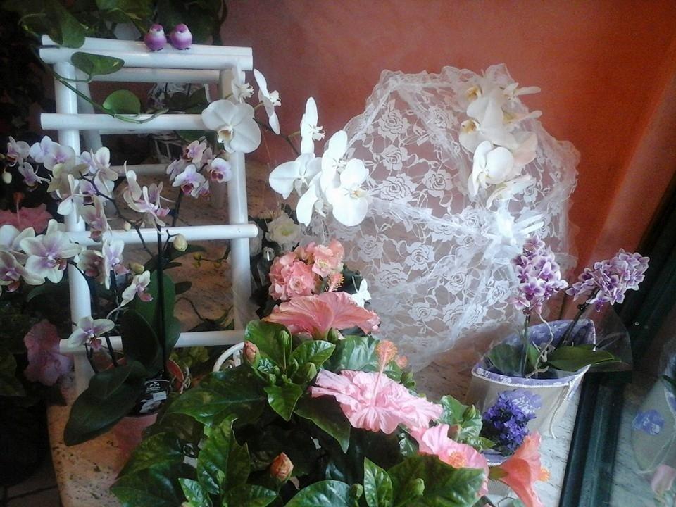 composizioni di floreali