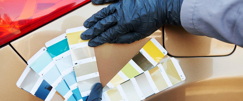 Un dipendente mostra delle palette di colori