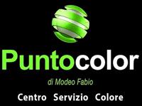 Puntocolor logo