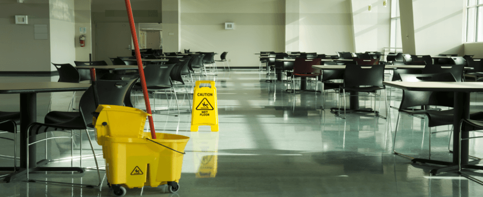pulizie professionali impresa