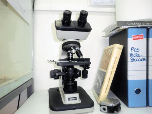 Volete effettuare delle analisi microbiologiche su campioni specifici? Rivolgetevi alla ditta S.C.P.